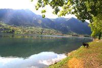 Bild 15: Ferienhaus Giorgia in Vesta am Lago di Idro mit eingezäunten Garten
